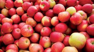 Врач: Свежесть и витаминную ценность яблок можно определить по запаху