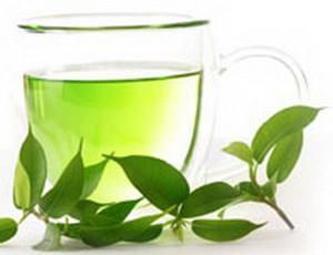Зеленый чай борется с последствиями западной диеты