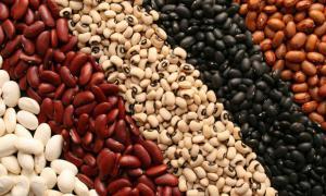 Польза и вред фасоли: кому рекомендуется включать бобы в рацион