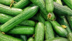 Самая полезная диета: как похудеть на овощах