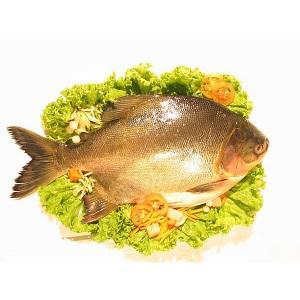 Названа самая полезная рыба
