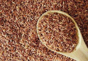Белый и коричневый рис — польза и основные различия