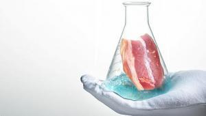 Ученые рассказали, где мясо из пробирки можно будет купить уже в этом году