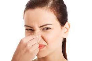 Перечисляем продукты, вызывающие неприятный запах тела